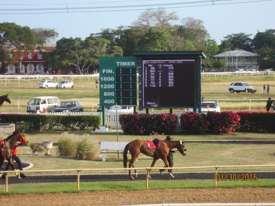 Barbados Turf Club: Photo of the finish line, sit on the 6th row, good view and blocked from the sun
