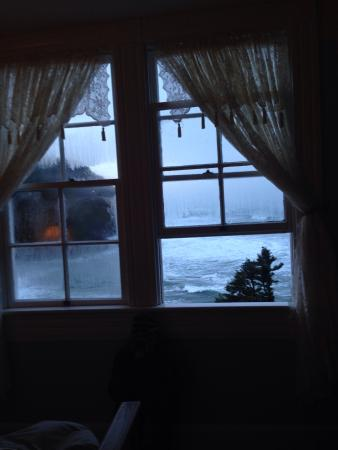 Heceta Head Lighthouse Bed and Breakfast: View out our window