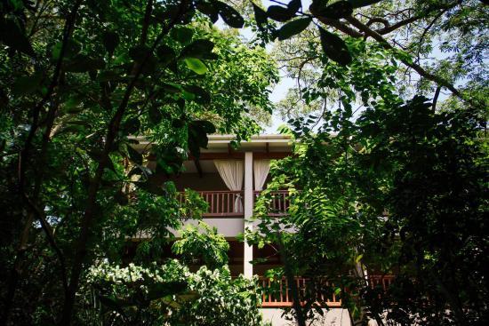 Port Shepstone, Sydafrika: Honeywood spa, it's love!