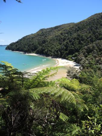 Abel Tasman National Park, Nouvelle-Zélande : bucht in der nähe