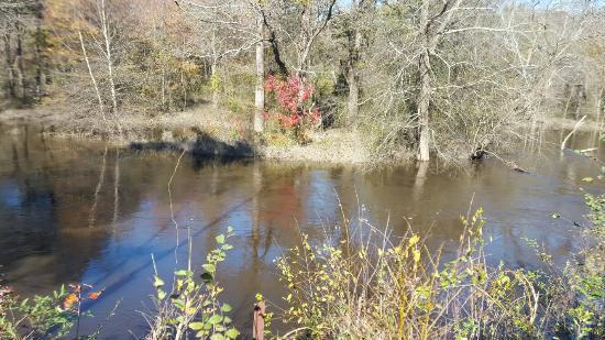 Goldsboro, NC: 20151121_124806_large.jpg