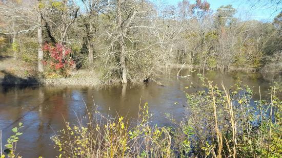 Goldsboro, NC: 20151121_124812_large.jpg