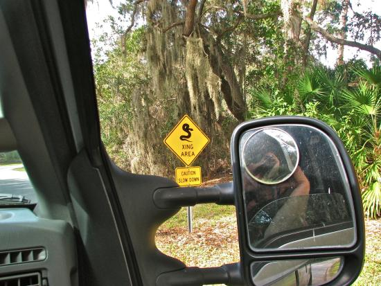 Seminole, FL: Snake Crossing