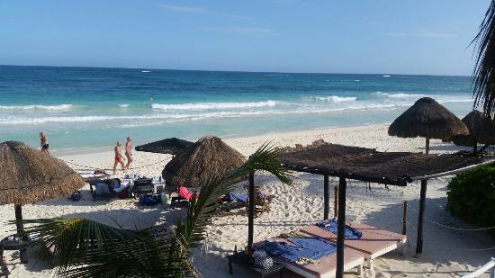 Om Tulum Hotel Cabanas and Beach Club: 20160204_162038_large.jpg