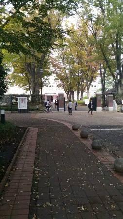 Musashino, Japón: 正門付近です