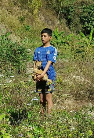 Provincia di Chiang Mai, Thailandia: 20160116_074840-1_large.jpg