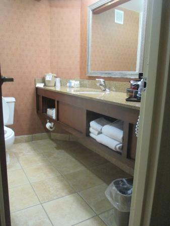 Holiday Inn Charleston-Mount Pleasant: Very Clean