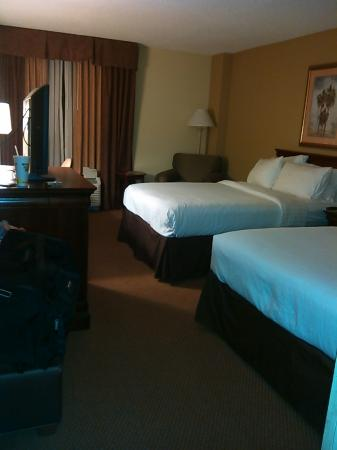 Holiday Inn Charleston-Mount Pleasant: The room