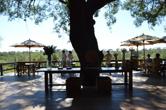 Londolozi Private Game Reserve, Sydafrika: Varty Camp