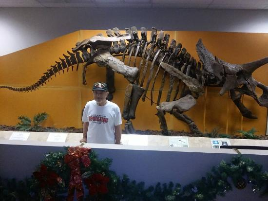 Plantation Historical Museum : Two Dinosaurs