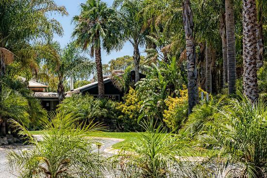 Strathalbyn, Australië: tropical paradise