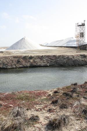 Kralendijk, Bonaire: Salzgewinnung und Abtransport nach Venezuela