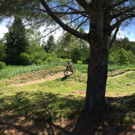 Kingdom Trails: Pump track for kids and families.