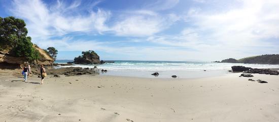 Warkworth, Nya Zeeland: photo0.jpg