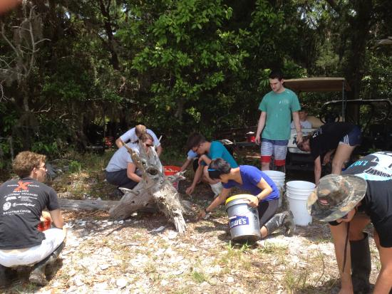 Ponte Vedra Beach, FL: Gathering stray oyster shells from the loading site