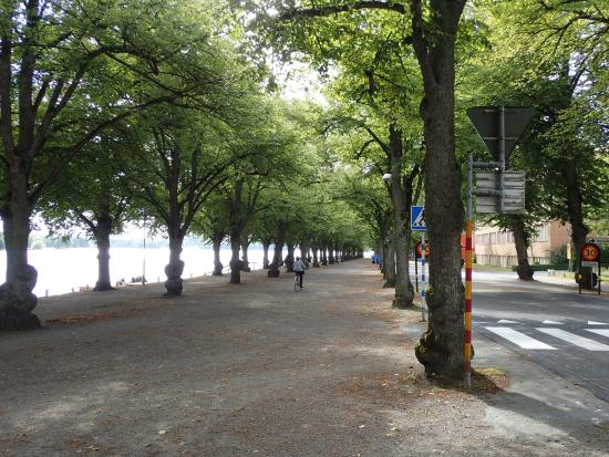 Walking/bike path along Lake Vaxjo
