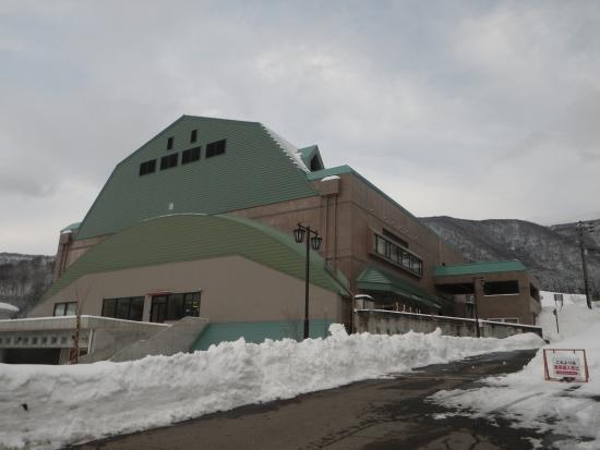 Nozawa Onsen Spa Arena