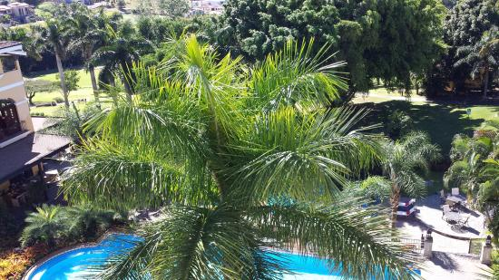 San Antonio De Belen, Costa Rica: A different view from our room.