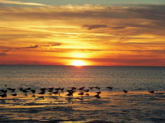 New Port Richey, FL: Sunset At Green Key