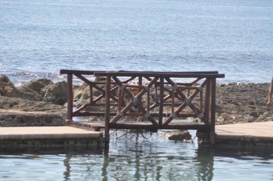 Grand Palladium Colonial Resort & Spa: salt water pool