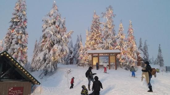 Christmas Lights On Grouse Mountain
