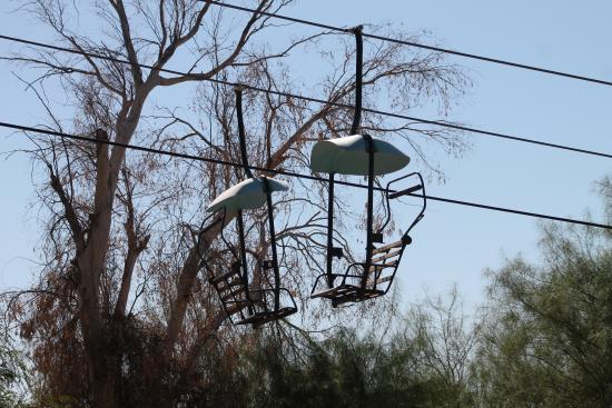 Litchfield Park, AZ: Tram that goes above some of the animals.