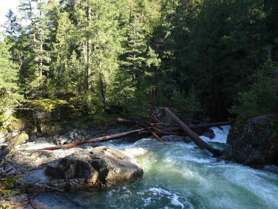 Little Qualicum Falls Provincial Park: Little Qualicum Falls, sunshine corner.