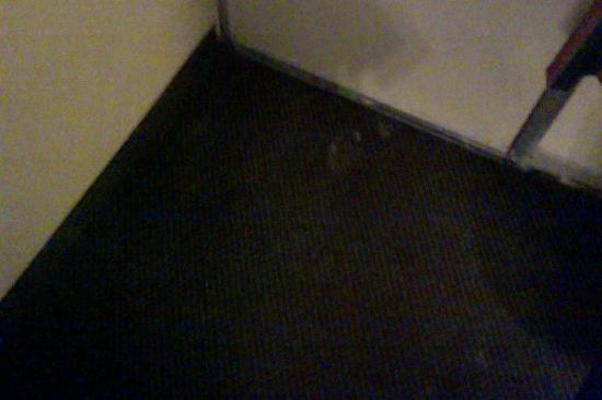 Crawfordsville, IN: White spots on the carpet