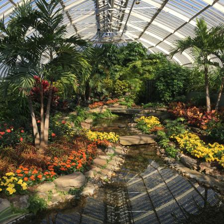 Phipps Conservatory: Sure doesn't feel like a Pittsburgh February in here!