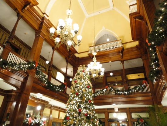 Americus, GA: The grand tree in the lobby plus a view of the upper floors.