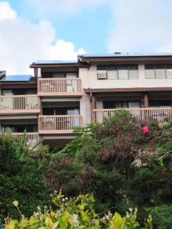 Banyan Harbor Resort: North view of the two balconies of our condo