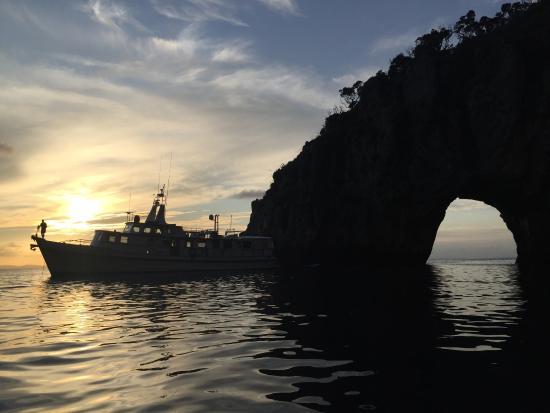 Tutukaka, Nueva Zelanda: the boat taken from the small boat