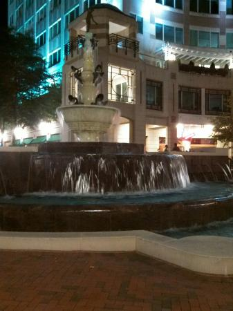 Reston, VA: IMG_20131018_205419_large.jpg