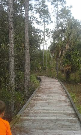 Yankeetown, FL: Withlacoochee Gulf Preserve