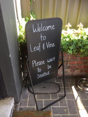 Ringwood, Avustralya: Leaf and Vine