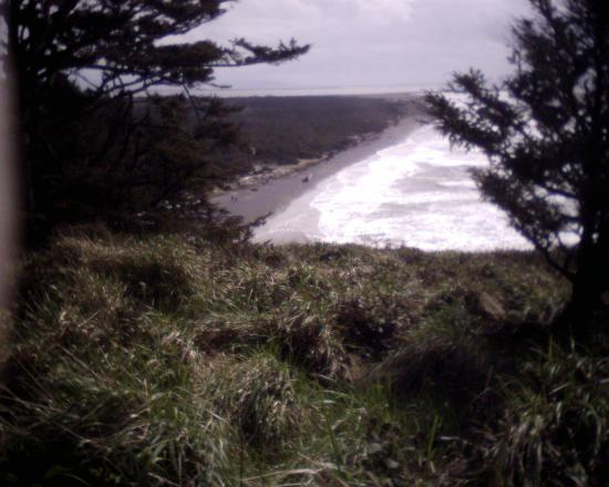 Ilwaco, WA: View of beach from path to North Head Lighthouse