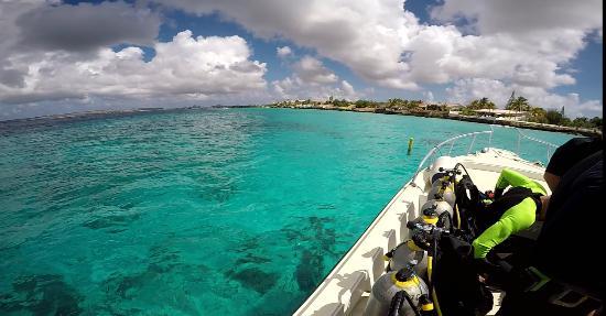 Kralendijk, Bonaire: Dive site.