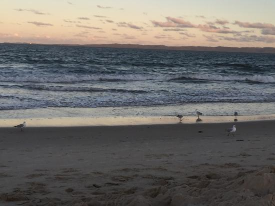 Bribie Island, Australië: photo0.jpg
