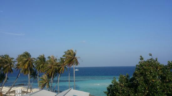 20160206 074914 large jpg picture of arena beach hotel maafushi rh tripadvisor com ph