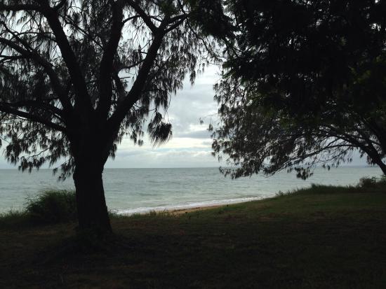 Pialba Beachfront Caravan Park Photo