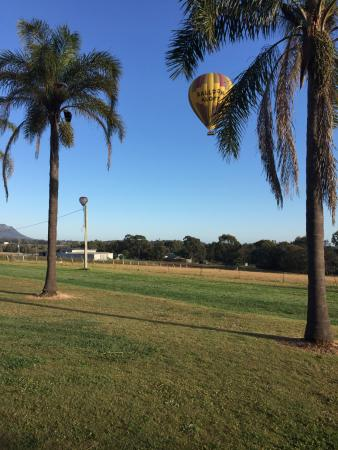 Pokolbin, Australia: Hot Air Balloons floating above the winery