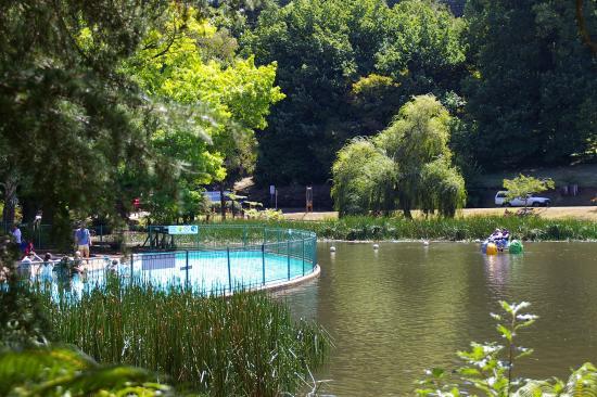 Emerald, Australia: Children's wading pool on Lake Treganowan