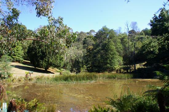 Emerald, Australia: Lake Nobelius