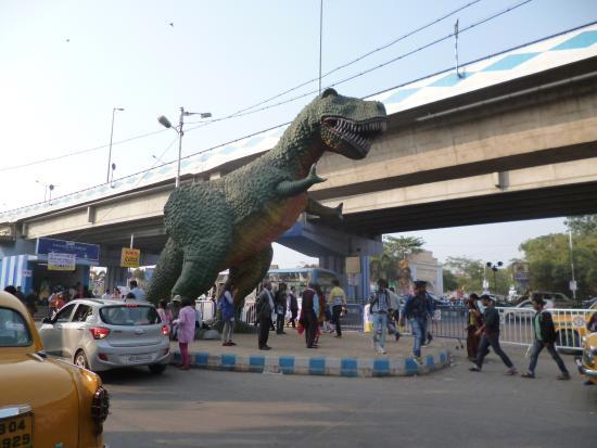 Science City - Kolkata City Tours | Kolkata City Tours
