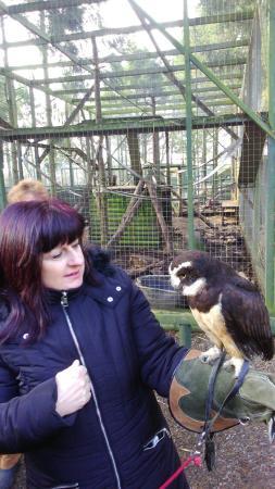 Telford, UK: Hoo Farm Animal Kingdom