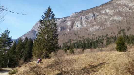 Srednja vas v Bohinju, Slovenien: 20160206_122922_large.jpg