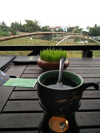 Orchid Garden Cafe Restaurant