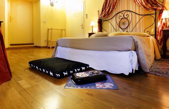 Montecarlo, Italia: Your dog will feel confortable!