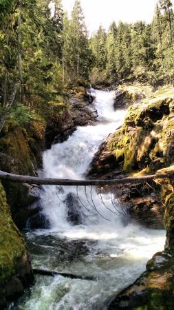 Mulvehill Creek Wilderness Inn and Wedding Chapel: Mulvehill Creek Waterfalls
