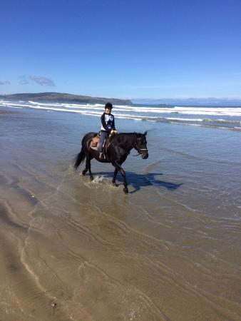 Инверкаргилль, Новая Зеландия: Ruby riding Shadow along Oriti Beach.